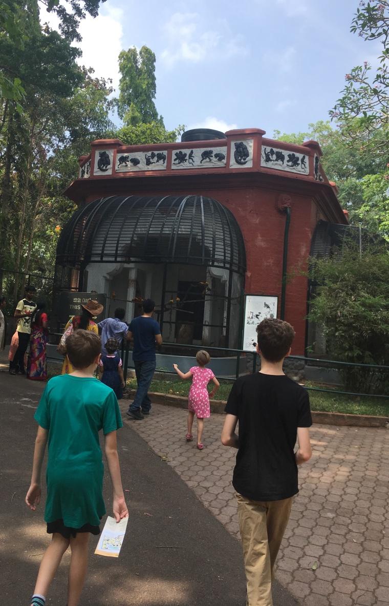 Triv Zoo